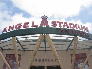 """""""Bucking Tradition"""" IS the tradition with Angels Baseball and should be with Small Business Marketing too"""